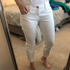 Ann Taylor Modern Pants